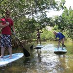 Watersports Paddleboard